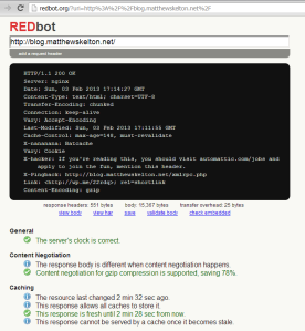 REDbot for blog.matthewskelton.net